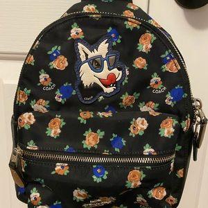 Coach dog backpack
